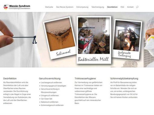 Website mit Divi von Elegantthemes für eine Messie-Entrümpelung