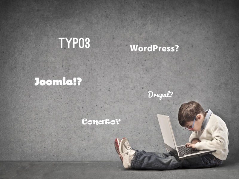 wordpress-contao-typo3-drupal