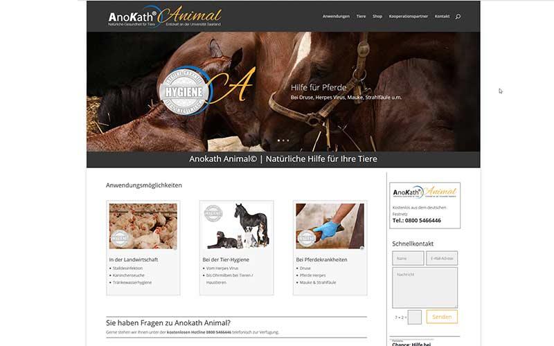 Homepage-für-anokath