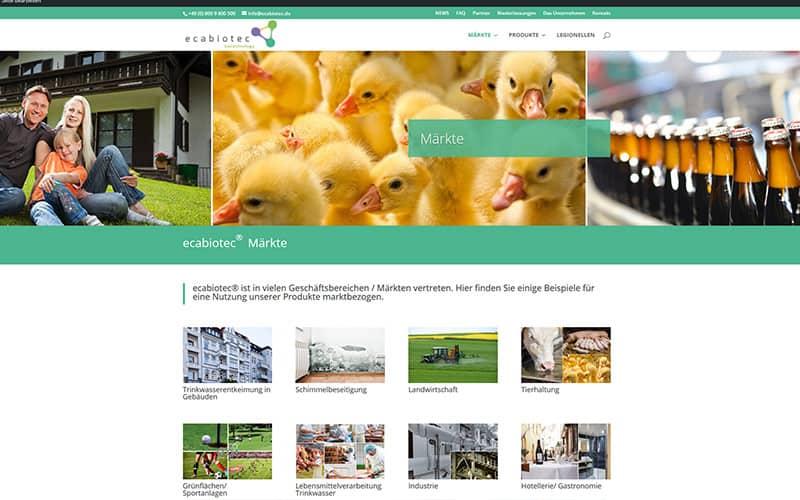 Homepage Erstellung Mörfelden Walldorf