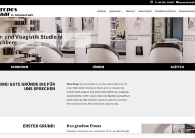 Friseur Hirschberg | WordPress Website